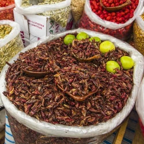 Prehispanic food and Snacks