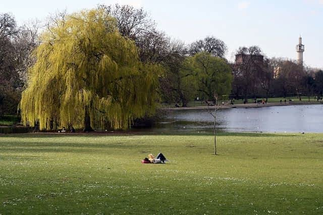 Person Reading a book at Regent's Park