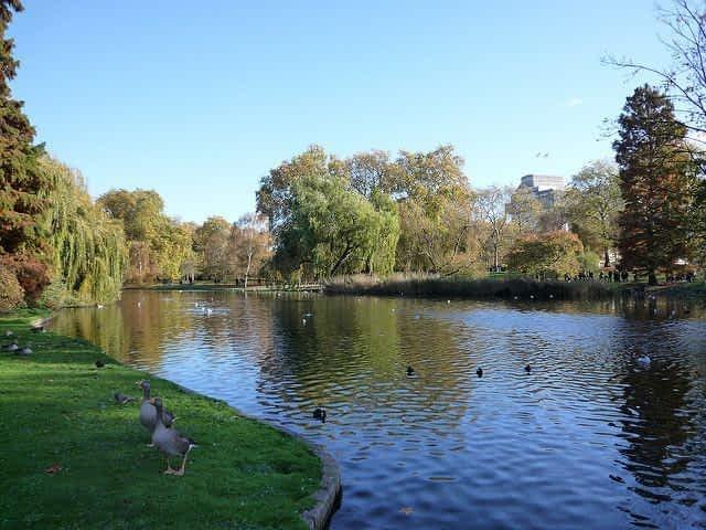 St james Park Lake